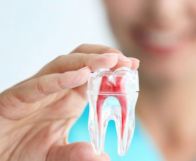 root-canal-dentist-south-ogden-nearby
